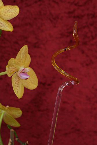 Orchideenstab gedreht gelb Blumenstab
