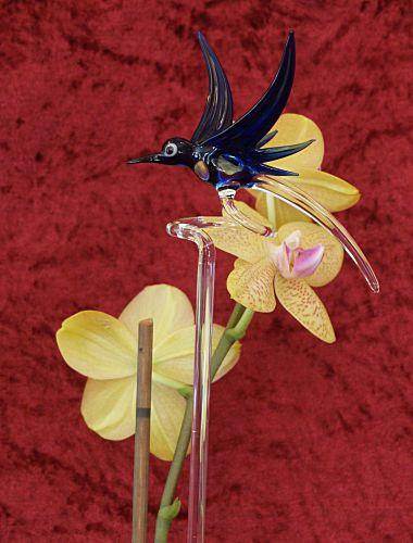 Orchideenstab mit Kolibri blau Blumenstab