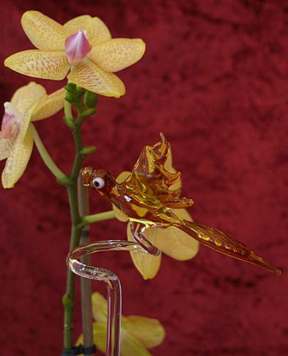 Orchideenstab mit Papagei gelb Blumenstab