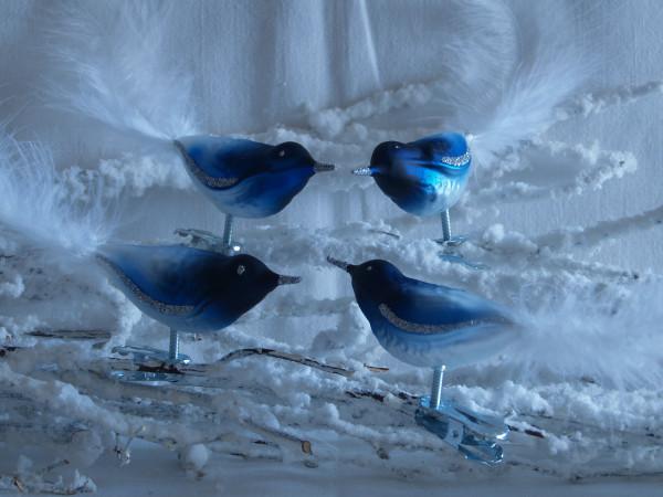 Glasvogel mit Federn blau weiß 4Stück per Box